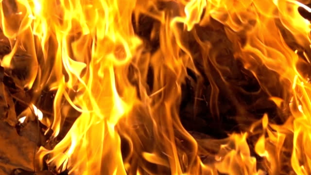 real Fire close up with burning in super Slow motion of Flame on fire (Fire concept) real Fire close up with burning in super Slow motion of Flame on fire (Fire concept) hell stock videos & royalty-free footage