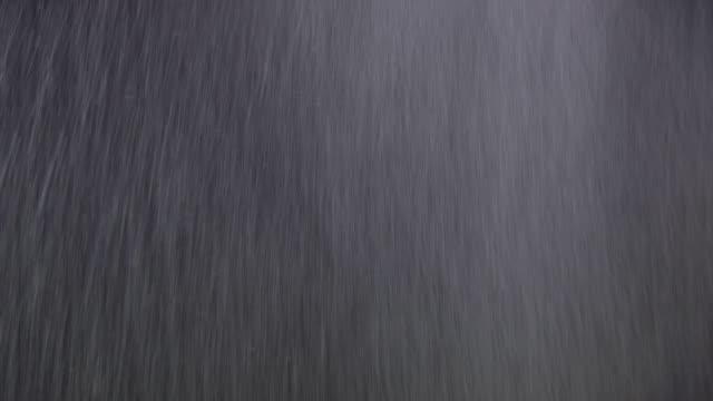 pioggia reale isolato su nero - pioggia torrenziale video stock e b–roll
