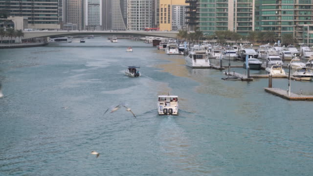 Real Time Modern skycrapers in Dubai marina video