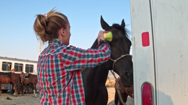 real time video of people preparing horses for a rodeo in utah, usa - cowgirl video stock e b–roll
