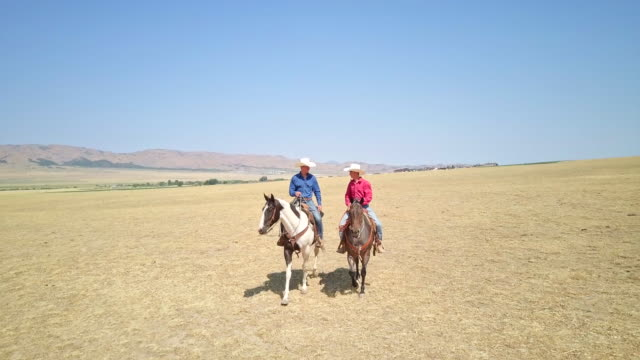 Real time video of two cowboys horseback riding together video