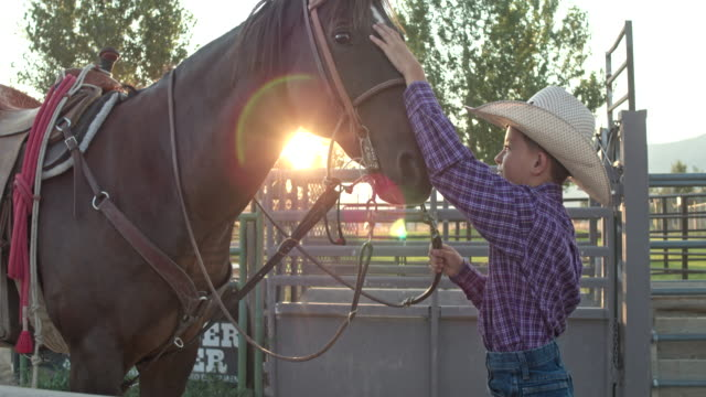 vídeos de stock e filmes b-roll de real time video of young cowboy standing and talking soothingly to his horse as he pets its head - sela