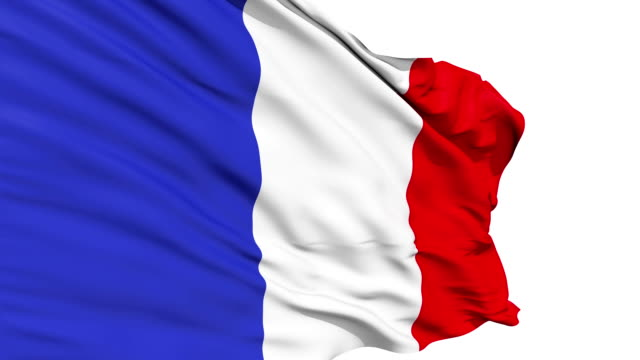 Realistic 3d seamless looping France flag waving in the wind. video