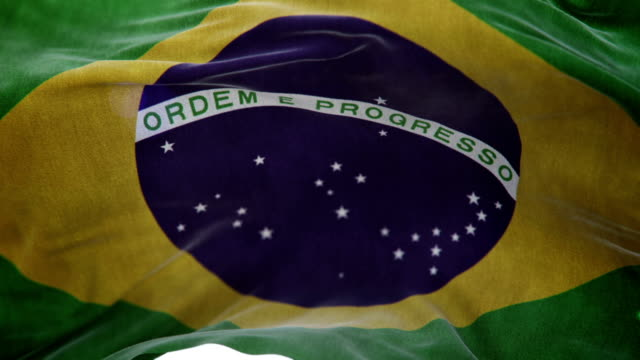 Realistic Brazil Flag 3d animation loop video