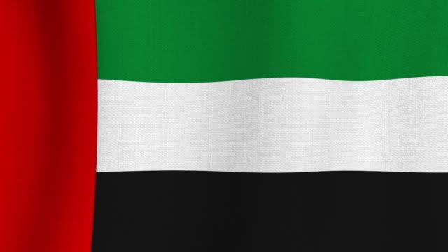 realistic cotton flag of united arab emirates as a background - uae flag filmów i materiałów b-roll