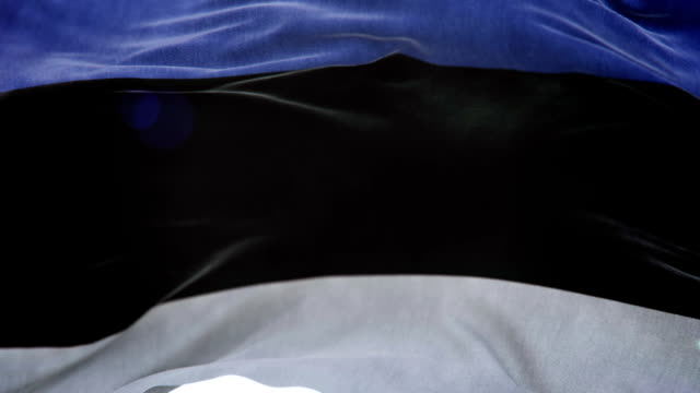 realistic estonia flag 3d animation loop - politica e governo video stock e b–roll