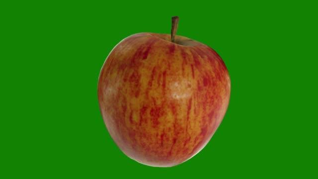 realistisches rendern eines rotierenden fuji-apfel auf grünem hintergrund. das video ist nahtlos loop - apple stock-videos und b-roll-filmmaterial