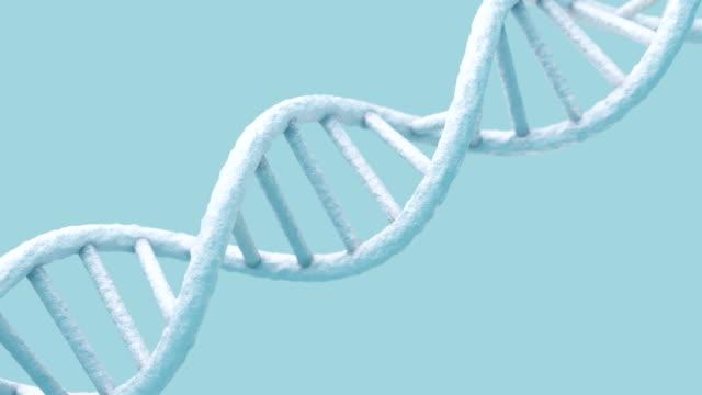vídeos de stock e filmes b-roll de realistic rotating dna  molecule on light blue background. - hélice formas geométricas