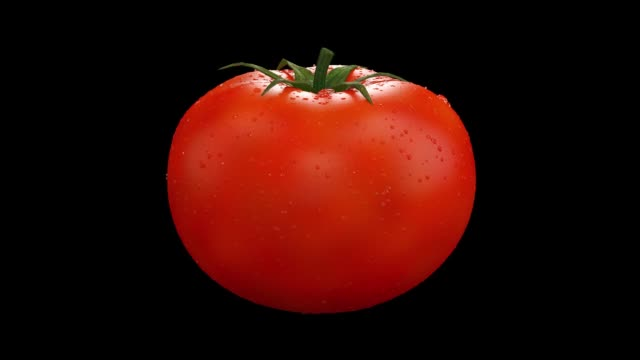 realistic tomato rotating in seamless loop. full rotation with alpha channel for luma mate. vegetable centered in frame and turning 360 degrees on the black background. - ketchup video stock e b–roll