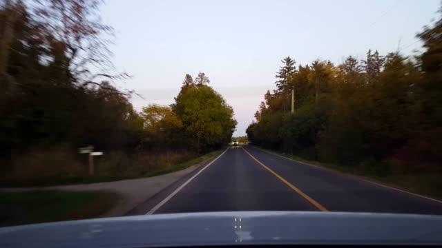 日中の田舎道を運転する車の後ろから見る。 ウッドランドの木々が並ぶ車両カントリーストリートの後ろの車の視点pov。 - 後方点の映像素材/bロール