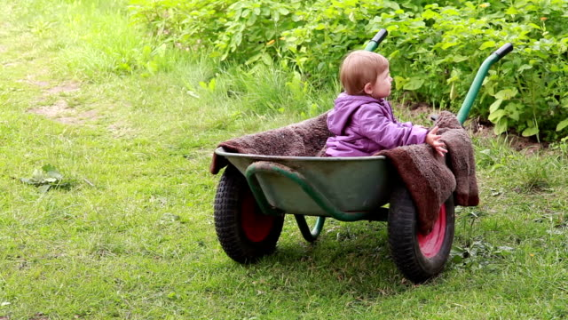 Rear view of a baby sitting inside the wheelbarrow in the backyard