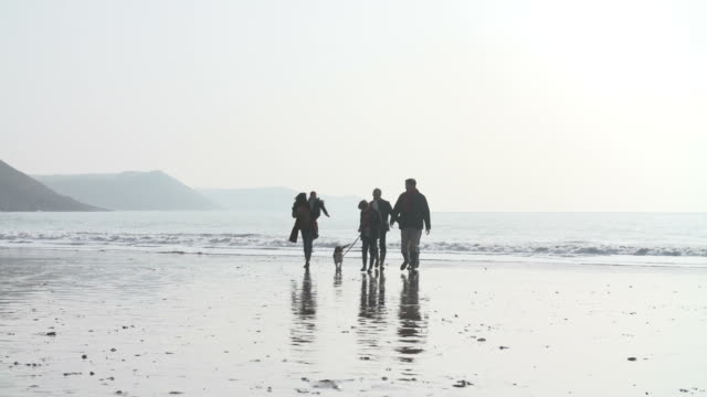 Rear View Of Family Running Along Winter Beach With Dog video