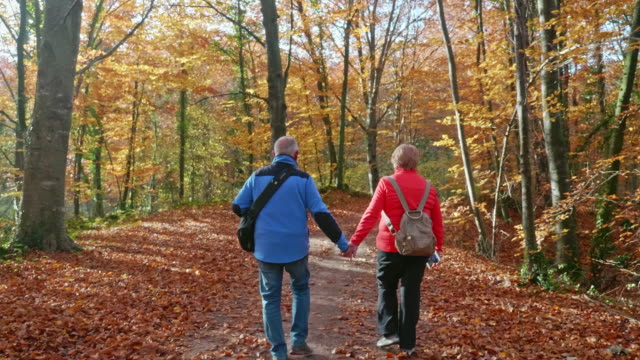 Rear View of Seniors at Their 70s Hiking Along Autumn Forest