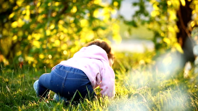 Rear view of the cute baby-girl sitting on the green grass in the park ar sunset. video