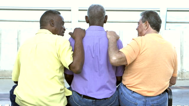 Rear view of three multi-ethnic senior men on bench video
