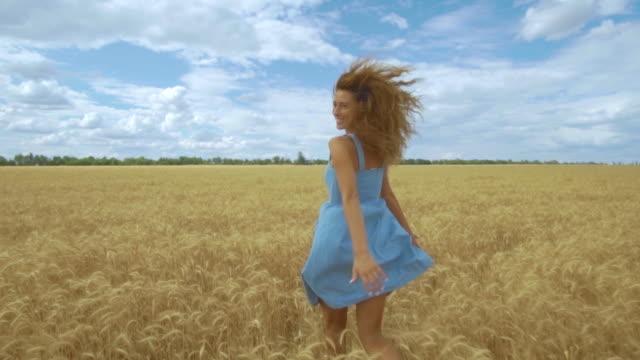 Achteraanzicht van jonge zorgeloze vrouw in jurk. Ze loopt door het veld aanraken met hand tarwe oren, genietend van vrijheid en kalmte op landelijke natuur in de zomer. Slowmotion video