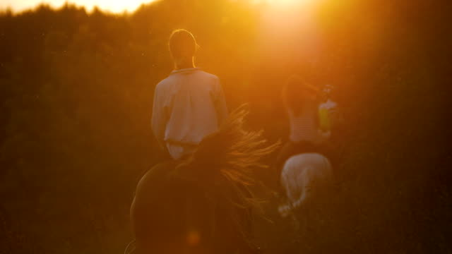 rear view of young women rides on horseback towards the forest at sunset - cowgirl video stock e b–roll