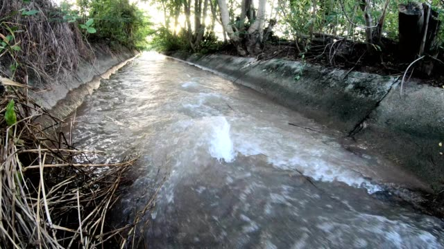 Rear view, old concrete flowing water. Low view of the back of the stream which is flowing violently through the old concrete grooves to the sunlight in the countryside. aqueduct stock videos & royalty-free footage