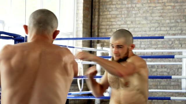 vídeos de stock e filmes b-roll de rear view shot of a bearded male boxer practicing in front of the mirror - campeão desportivo