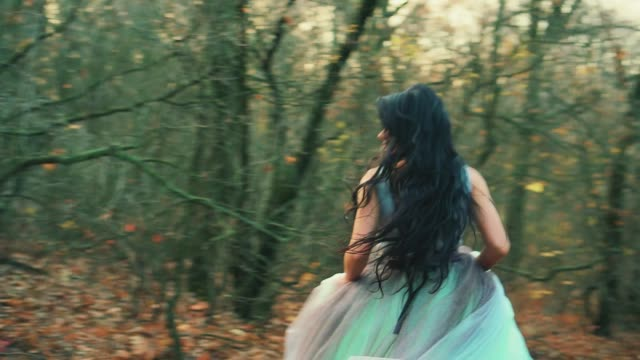 rear view woman in luxurious puffy aqua color dress runs away looks back. rear view mysterious woman in luxurious puffy aqua color dress runs away looks back. fabulous Princess in gothic autumn forest. Silk Fabric dark long hair flutter in motion. Fog, orange fallen leaves princess stock videos & royalty-free footage