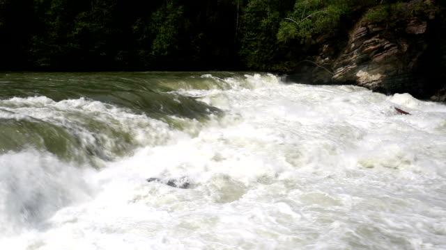 rearguard falls provincial park - fiume fraser video stock e b–roll