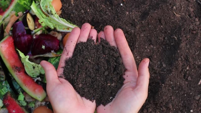 Recycles Kitchen and Yard Waste. Soil in the hands of the gardener Optimal Compost Ingredients To Create Rich Black Soil worm stock videos & royalty-free footage