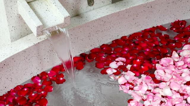 rote und rosa rosenblätter im bad und fließendem wasser - sauna und nassmassage stock-videos und b-roll-filmmaterial