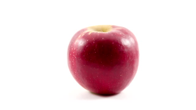 Red apple bites stop motion video