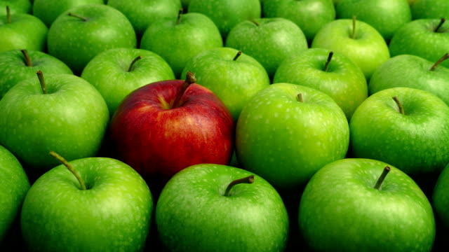 Red Apple In Green Apples - Individual Concept Red apple among green apples, could be used to show individualism, standing out, difference, etc individuality stock videos & royalty-free footage