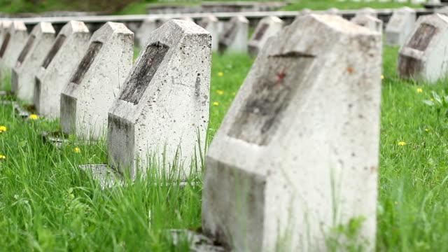 red army wwii cemetery - ljus på grav bildbanksvideor och videomaterial från bakom kulisserna