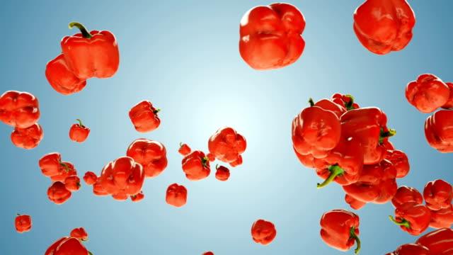 vídeos de stock e filmes b-roll de red bell pepper flying in slow motion, against blue gradient - red bell pepper isolated