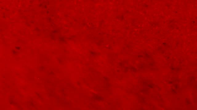 Red Berries Grinders in Blender video