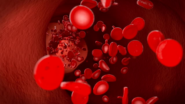 vídeos de stock e filmes b-roll de red blood cell erythrocytes flow through the vein - anatomia