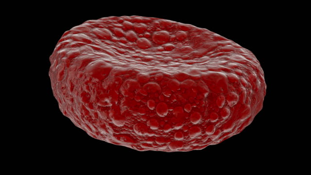 Red blood cell gyrating on black background video