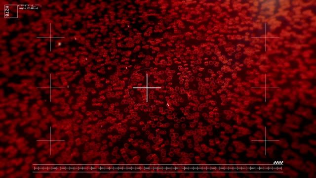 Red blood cells, erythrocytes as seen under microscope, live blood cell analysis video