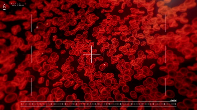 Best Red Blood Cell Stock Videos and Royalty-Free Footage - iStock