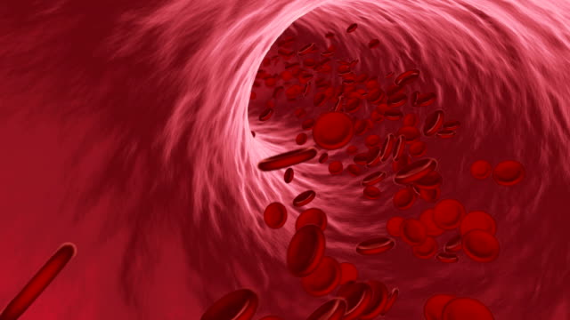 Red blood cells flowing through vein or artery Red blood cells flowing through vein or artery. Erythrocytes in interior of capillar or blood vessel. Blood flow or stream in 3D. Scientific, medical or microbiological animation. 3D render blood vessel stock videos & royalty-free footage