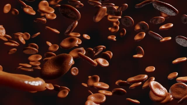 red blood cells in artery.3d animation. red blood cells in artery.3d animation. blood clot stock videos & royalty-free footage
