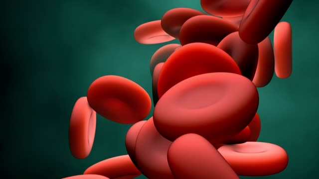 Red Blood Cells in motion 3d Red Blood Cells in motion blood clot stock videos & royalty-free footage