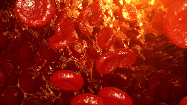 Red blood cells in vein or artery, flow inside inside a living organism. Red blood cells in vein or artery, flow inside inside a living organism. Science and medicine concept. Photorealistic 4k 3D animation blood clot stock videos & royalty-free footage