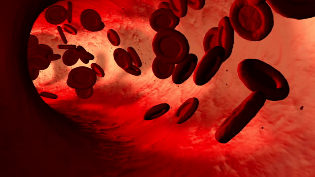 Red Blood Cells Red blood cells pumping through a artery. blood flow stock videos & royalty-free footage
