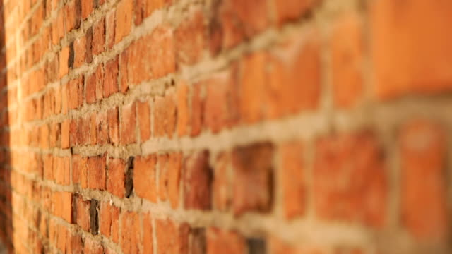 red brick wall grunge texture - mattone video stock e b–roll