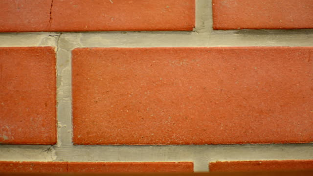 Red brick wall video
