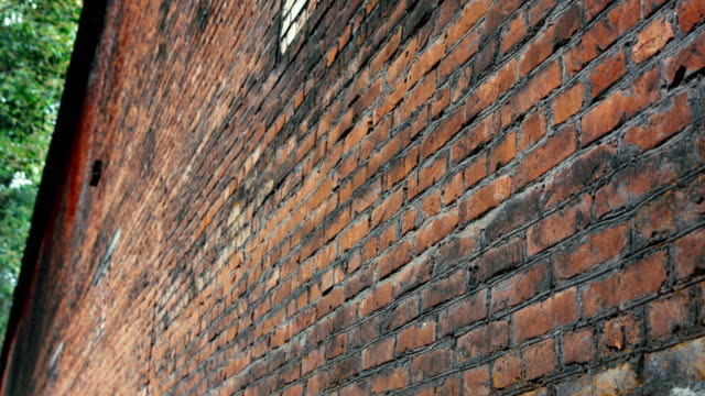 red brick wall - fianco a fianco video stock e b–roll