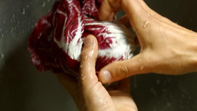 Red cabbage under water video