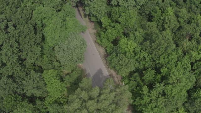 röd bilkörning i skog - wheel black background bildbanksvideor och videomaterial från bakom kulisserna