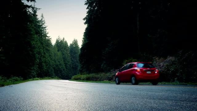red car passes on forest road - passare davanti video stock e b–roll