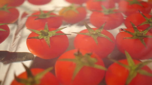 Red cherry tomatoes in a glass pan on a stove, dolly shot Cherry tomatoes in a glass pan on a stove, dolly shot clip saturated color stock videos & royalty-free footage