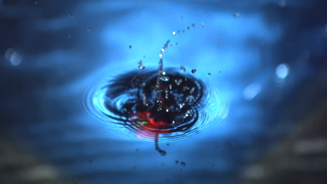 red chili falling in water - chilli stock-videos und b-roll-filmmaterial