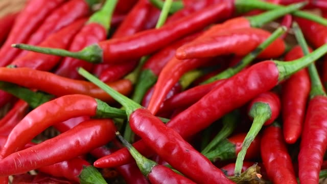 red chili pepper rotation
